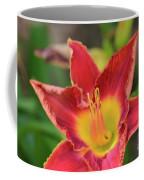 Red Daylily Coffee Mug