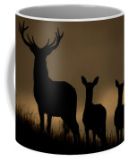 Red Deer At Dawn Coffee Mug