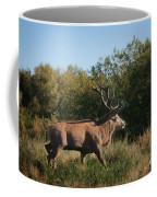 Red Deer Stag Coffee Mug
