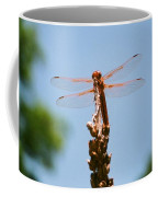 Red Dragonfly Coffee Mug