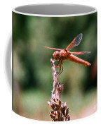 Red Dragonfly II Coffee Mug