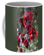 Red Fall Leaves In The Sun Coffee Mug