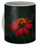 Red Flower 5 Coffee Mug