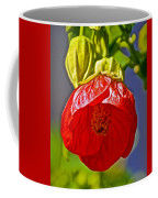 Red Flower At Pilgrim Place  In Claremont-california Coffee Mug