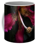 Red Flower Close Up Coffee Mug