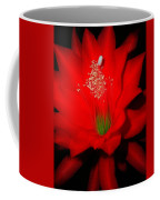 Red Flower For You Coffee Mug