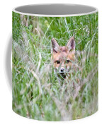 Red Fox Baby Hiding Coffee Mug