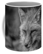 Red Fox In Black And White Coffee Mug