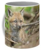 Red Fox Kit Coffee Mug
