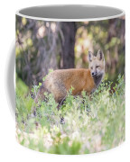 Red Fox Kit Looking For Mom Coffee Mug