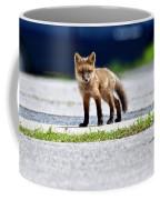 Red Fox Kit On Road Coffee Mug