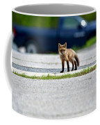 Red Fox Kit Standing On Old Road Coffee Mug