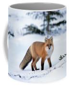 Red Fox Vulpes Vulpes Portrait Coffee Mug