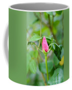 Red Garden Rose Bud Coffee Mug