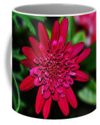 Red Gerbera Daisy Coffee Mug