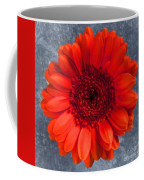 Red Gerbera Coffee Mug