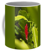 Red Ginger Flower Coffee Mug
