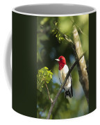 Red-headed Woodpecker Perched On A Tree Coffee Mug by George Grall