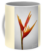 Red Heliconia Coffee Mug