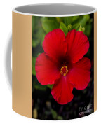 Red Hibiscus - Kauai Coffee Mug