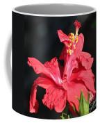 Red Hibiscus Square 2 Coffee Mug