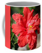 Red Hibiscus Square Coffee Mug