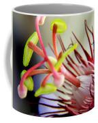Red Hot Passion Coffee Mug