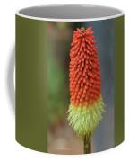 Red Hot Pokers Coffee Mug