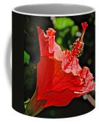 Red Hyacinth At Pilgrim Place In Claremont-california Coffee Mug