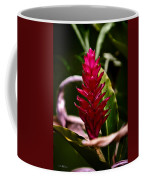 Red In The Forest Coffee Mug