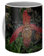 Red Lady Slipper Coffee Mug