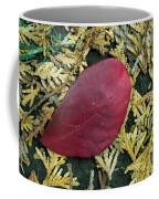 Red Leaf On  Arborvitae Leaves Coffee Mug