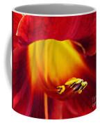 Red Lily Center 4 Coffee Mug