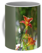 Red Orange Day Lilies I Coffee Mug