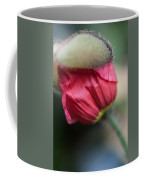 Red Poppy Sneaking Out Coffee Mug