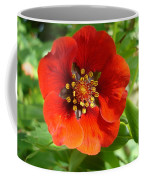 Red Red Bloom Coffee Mug