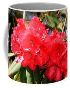 Red Rhodie Coffee Mug