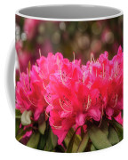 Red Rhododendron Flowers At Floriade, Canberra, Australia. Coffee Mug