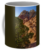 Red Rock Textures Coffee Mug