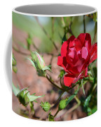 Red Rose And Buds Coffee Mug