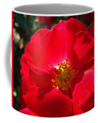 Red Rose Art Print Sunlit Roses Botanical Giclee Baslee Troutman Coffee Mug