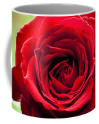 Red Rose Colour Isolated On A Green Background. Coffee Mug