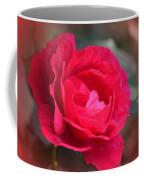 Red Rose Of May Coffee Mug