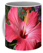 Red Rose Of Sharon  Coffee Mug