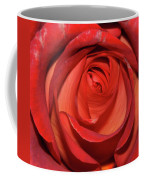 Red Rose Up Close Coffee Mug