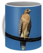 Red-shoulder Hawk Coffee Mug