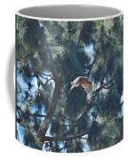 Red Shouldered Hawk Flying Away 1 Coffee Mug