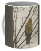 Red-shouldered Hawk Coffee Mug