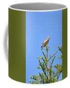 Red-shouldered Perch Coffee Mug