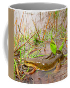 Red Spotted Newt Coffee Mug